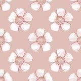 Teste padrão com flores brancas Aquarela sem emenda Imagem de Stock Royalty Free