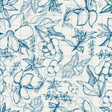 Teste padrão com flores da mola Fotografia de Stock