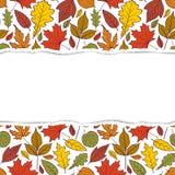 Teste padrão com folhas de outono Imagens de Stock Royalty Free