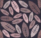 Teste padrão com folhas do Sorbus Fotos de Stock Royalty Free