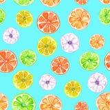Teste padrão com frutos cristalizados coloridos da aquarela Fotos de Stock Royalty Free