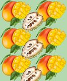 Teste padrão com frutos da manga e do noyna ilustração royalty free