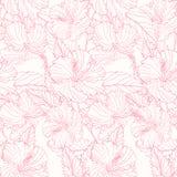 Teste padrão com hibiscus Imagem de Stock
