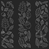Teste padrão com o Linden da bolota de Mapple do carvalho das folhas de outono Imagens de Stock