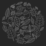Teste padrão com o Linden da bolota de Mapple do carvalho das folhas de outono Fotografia de Stock