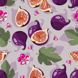 Teste padrão com os figos para seu projeto Imagens de Stock Royalty Free