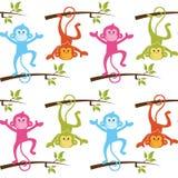 Teste padrão com os macacos com fundo branco Fotografia de Stock