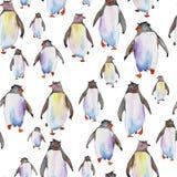 Teste padrão com pinguins da aquarela Fotografia de Stock