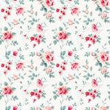 Teste padrão com rosas Imagem de Stock Royalty Free