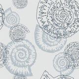 Teste padrão com um nautilus ilustração royalty free