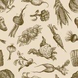 Teste padrão com vegetais Imagens de Stock Royalty Free