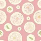 Teste padrão cor-de-rosa com dálias e pontos fotografia de stock royalty free