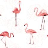Teste padrão cor-de-rosa do esboço das flores dos pássaros cor-de-rosa do flamingo Imagens de Stock Royalty Free