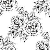 Teste padr?o cor-de-rosa sem emenda com flores do esbo?o ilustração royalty free