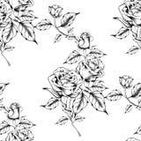 Teste padr?o cor-de-rosa sem emenda com flores do esbo?o foto de stock