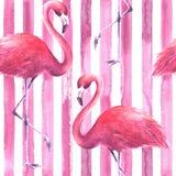 Teste padrão cor-de-rosa sem emenda dos flamingos ilustração royalty free
