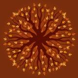 Teste padrão da árvore de carvalho - outono Imagens de Stock Royalty Free