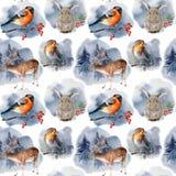 Teste padrão da aquarela com animais e pássaros em cervos pintados à mão, em lebre, em billfinch, em pisco de peito vermelho e em ilustração stock