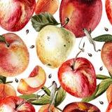 Teste padrão da aquarela com maçãs e pêssegos Imagens de Stock