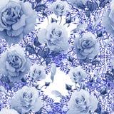 Teste padrão da aquarela com rosas e testes padrões do laço Foto de Stock
