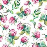 Teste padrão da aquarela das rosas Imagem de Stock