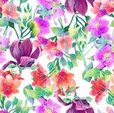 Teste padrão da aquarela de flores exóticas Fotos de Stock Royalty Free