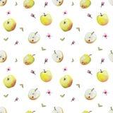 Teste padrão da aquarela de maçãs e das flores amarelas ilustração do vetor