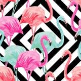 Teste padrão da aquarela do flamingo, fundo geométrico Foto de Stock