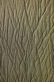 Teste padrão da areia Foto de Stock
