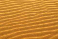 Teste padrão da areia dourada na duna de areia Foto de Stock