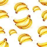 Teste padrão da banana do fruto do verão da aquarela Imagens de Stock Royalty Free