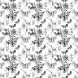Teste padrão da borboleta e de flores Imagem de Stock Royalty Free