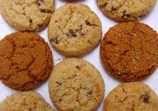 Teste padrão da cookie Imagens de Stock Royalty Free