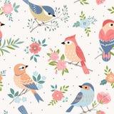 Teste padrão da cor pastel do pássaro ilustração royalty free