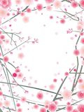 Teste padrão da flor da cereja ou da ameixa ilustração royalty free