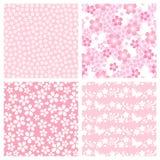 Teste padrão da flor de cereja Imagens de Stock Royalty Free