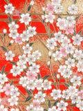 Teste padrão da flor de cerejeira Fotografia de Stock