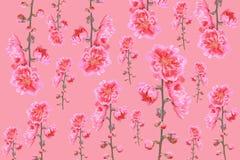 Teste padrão da flor do pêssego Foto de Stock Royalty Free