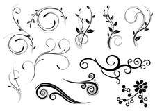 Teste padrão da flor e das folhas Imagens de Stock