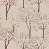 Teste padrão da floresta do outono Fundo sem emenda da planta e das árvores Fotos de Stock