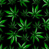 Teste padrão da folha da marijuana Foto de Stock Royalty Free
