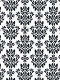 Teste padrão da folha do damasco   Imagens de Stock