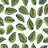 Teste padrão da folha, para a decoração, o fundo e para todas as necessidades ilustração stock