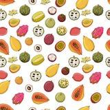 Teste padrão da ilustração do vetor de frutos exóticos Para telas, matérias têxteis, roupa de cama ilustração royalty free