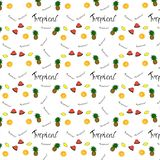 Teste padrão da laranja do fruto, limão, abacaxi, melancia ily ilustração royalty free