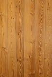 Teste padrão da madeira da árvore da teca Imagens de Stock