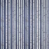 Teste padrão da madeira de vidoeiro ilustração do vetor