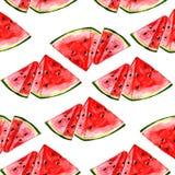 Teste padrão da melancia do fruto do verão da aquarela Fotografia de Stock
