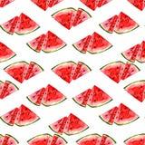 Teste padrão da melancia do fruto do verão da aquarela Imagem de Stock