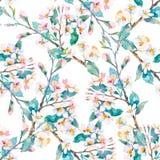 Teste padrão da mola Filiais de florescência watercolor Vetor Fotos de Stock Royalty Free